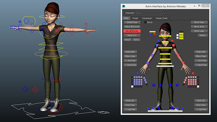 mery-project-rigging
