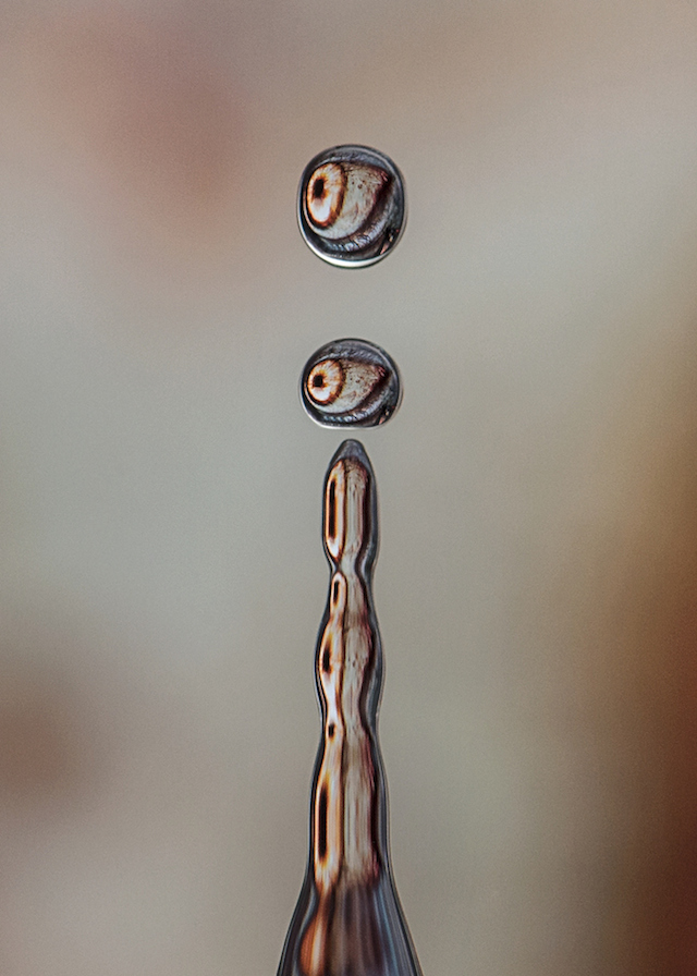dave-wood-water-drops-11