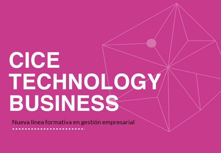 CICE Technology Business